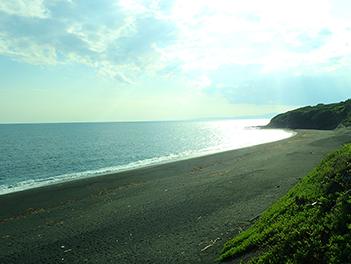 伊豆大島について