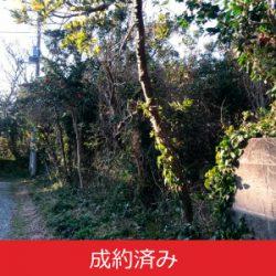 【成約済み】大島空港近くの土地
